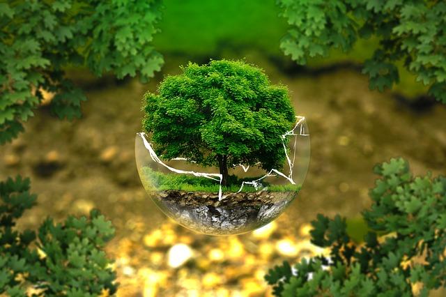 ekologiskt